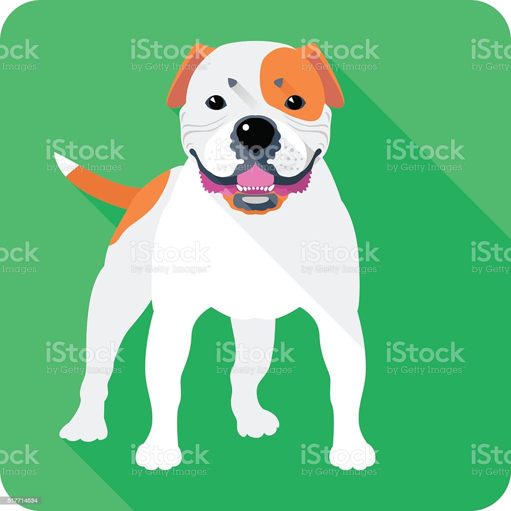 dog American Bulldog icon flat design vector art illustration