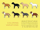 Dog American Stafforshire Terrier Coloring Variations Vector Illustration