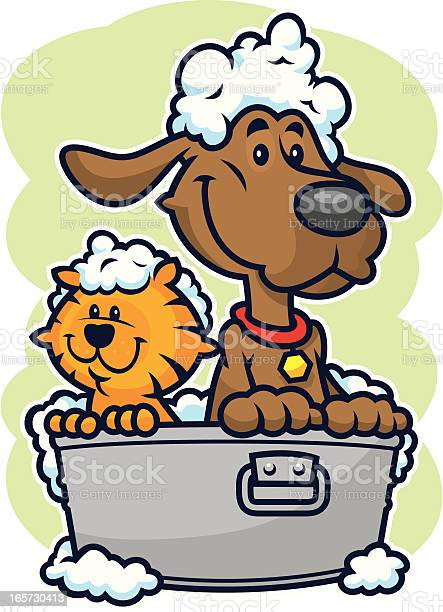Dog and cat bath vector id165730413?b=1&k=6&m=165730413&s=612x612&h=gua83tgubhoftwwlxbyvvjrsna3ty7ia4hcej4hsytg=