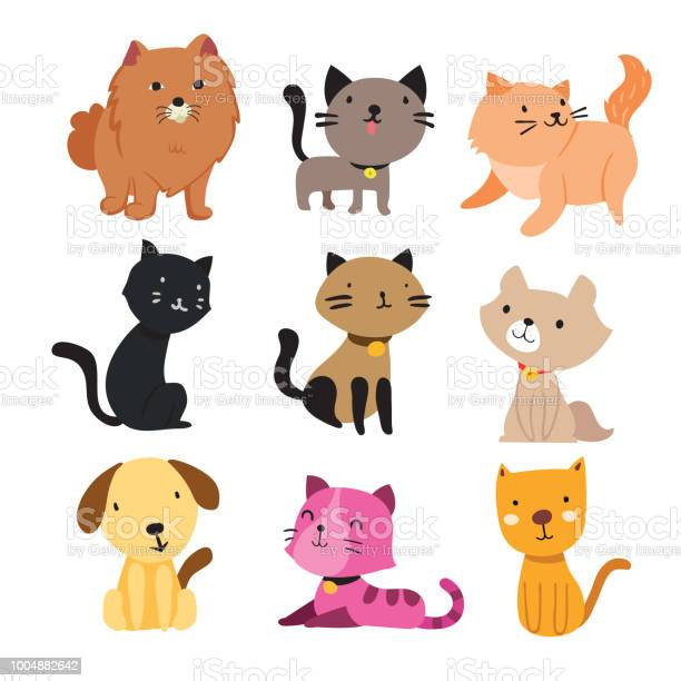 Dog and cat character vector design vector id1004882642?b=1&k=6&m=1004882642&s=612x612&h=n1gqph1xajs8epa1wzeok96nlk8mzj1yv8xz gjtvpa=