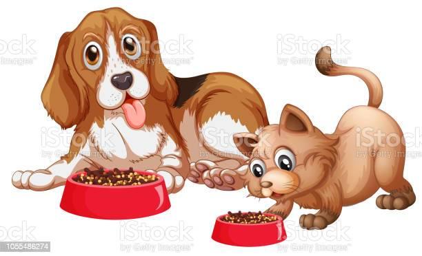 Dog and cat eating vector id1055486274?b=1&k=6&m=1055486274&s=612x612&h=vdjmzzfleussh4hr0kdgzn2npwe7ol8scyr5fgorxky=