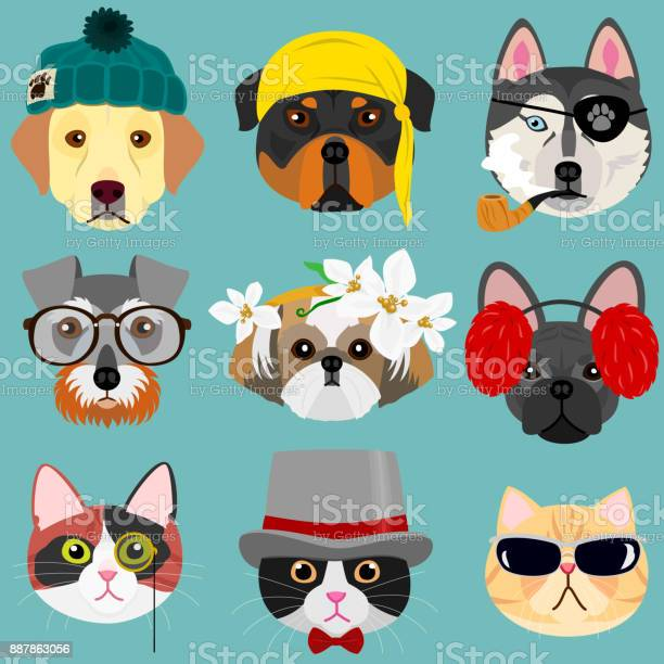 Dog and cat face set in hipster fashion vector id887863056?b=1&k=6&m=887863056&s=612x612&h=euk4zq0hwtmofwiwjv nfnljosjike1ejlduqkqpovu=