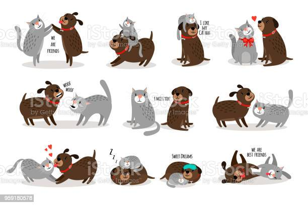 Dog and cat together vector id959180578?b=1&k=6&m=959180578&s=612x612&h=noifbhfgjxbfti1143lryofu44jal9ry3orsjjjwgpy=