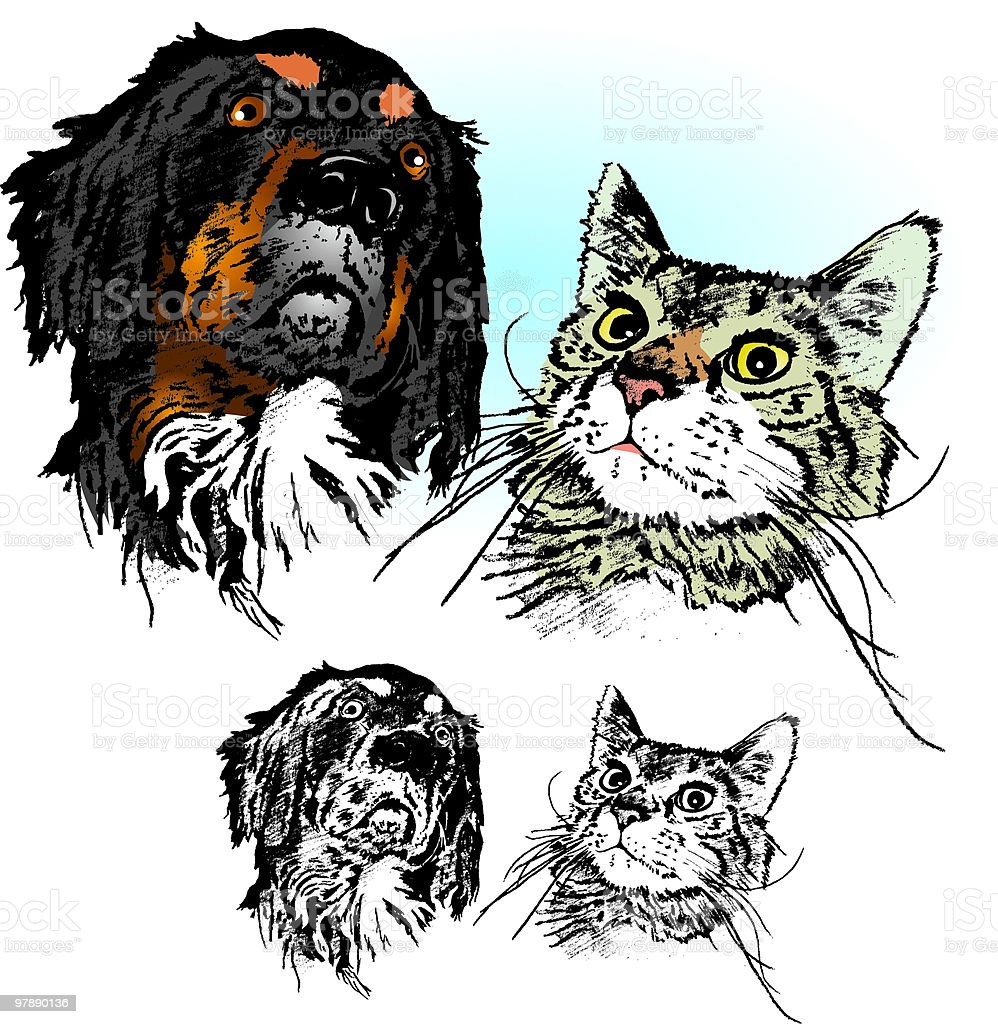 Dog and Cat royalty-free dog and cat stock vector art & more images of canine