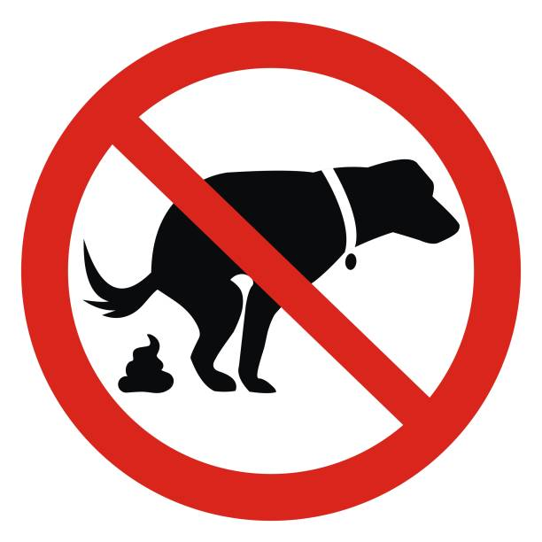 Dog and excrement at red frame, eps. Dog and excrement, no dog pooping sign. Information red circular sign for dog owners. Shitting is not allowed. Vector illustration. feces stock illustrations