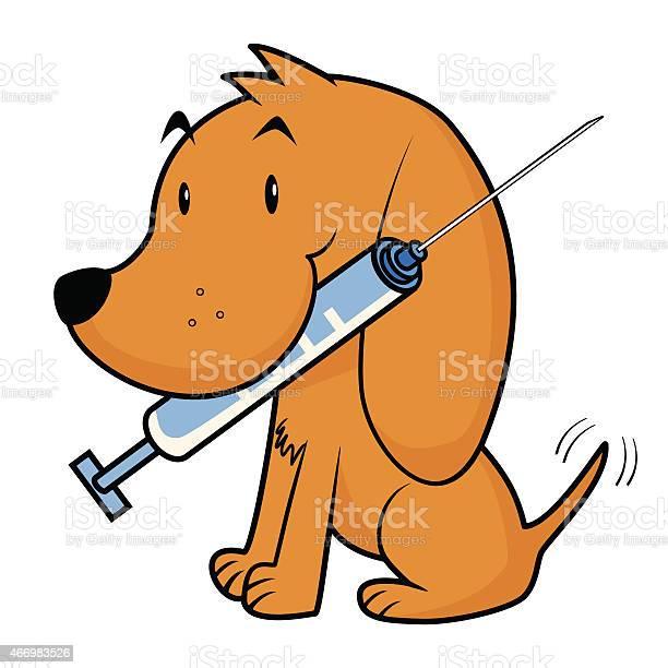 Dog and vaccine vector id466983526?b=1&k=6&m=466983526&s=612x612&h=s0vc12 2ittk1hlc6ykv9vts19ek rsrw8ljwe3oaho=