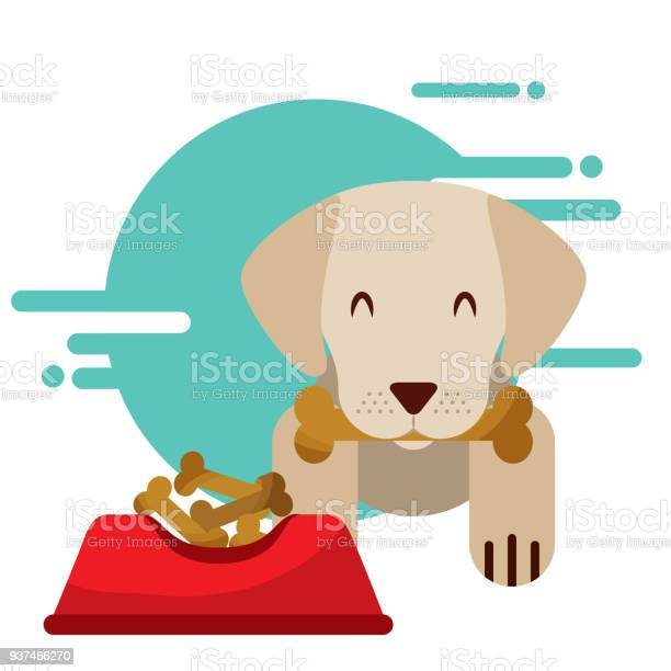 Dog animal domestic vector id937466270?b=1&k=6&m=937466270&s=612x612&h=rooupex6mgebtxqyi3xjlspowrz3aqfota8j5duahle=