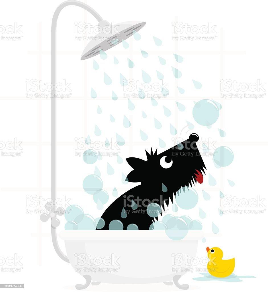 Dog bath terrier cute illustration vector