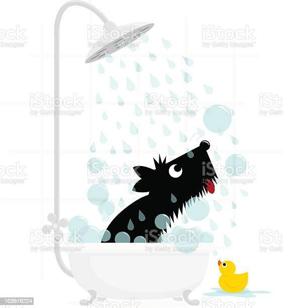 Dog bath terrier cute illustration vector vector id103976224?b=1&k=6&m=103976224&s=612x612&h=ha5dbox7ez 2w4qorps3ocd pwnkguqnjcu9lhxvx7e=