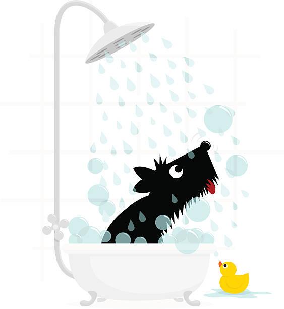 dog bath terrier cute illustration vector - 淋浴 幅插畫檔、美工圖案、卡通及圖標