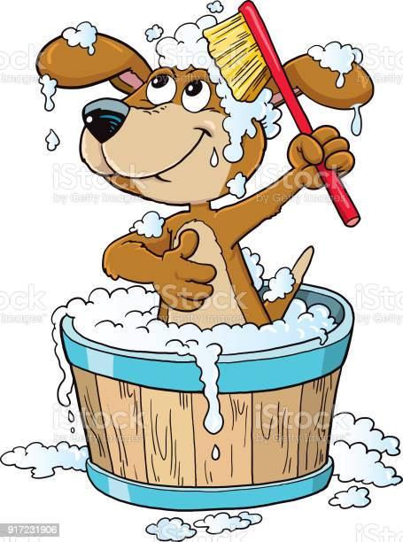 Dog bathing time vector id917231906?b=1&k=6&m=917231906&s=612x612&h=zgn3zukjobnxgamjpn0kf0tli6sakhi8cbwtmheduhs=
