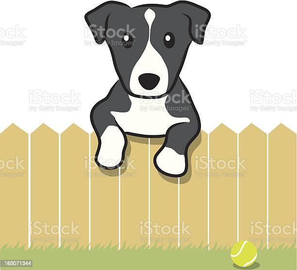 Dog behind fence and tennis ball vector id165071344?b=1&k=6&m=165071344&s=612x612&h=g83x63cwnoq l6bul msgtzx 0xb5kjeaqmp doolxe=