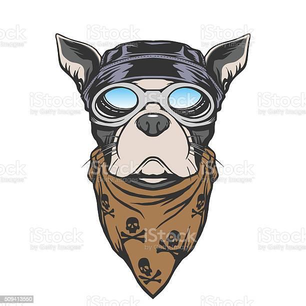 Dog biker illustration vector id509413550?b=1&k=6&m=509413550&s=612x612&h=exbwwvs8j9gu88l4oeiscsjbqrffmyui3aew5uindtm=