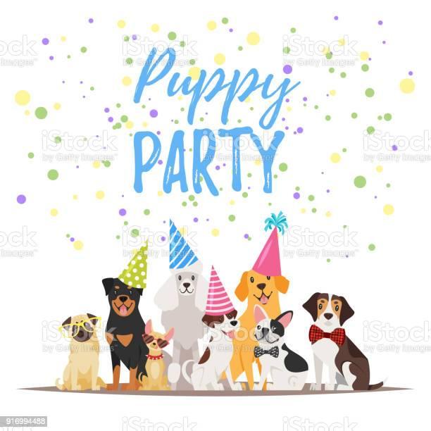 Dog birthday party greeting card vector id916994488?b=1&k=6&m=916994488&s=612x612&h=xzrhkmeim3 ds2om58t9uux e8vj reznjfqtdmvp0c=