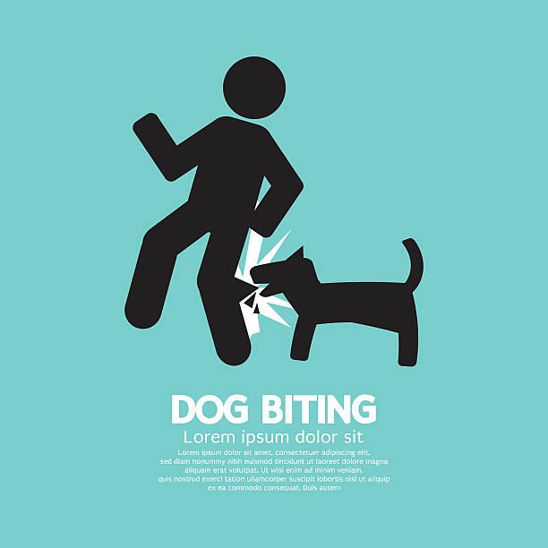 Dog Bite Clip Art, Vector Images & Illustrations - iStock