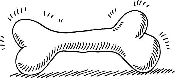 Dog Bone Drawing vector art illustration