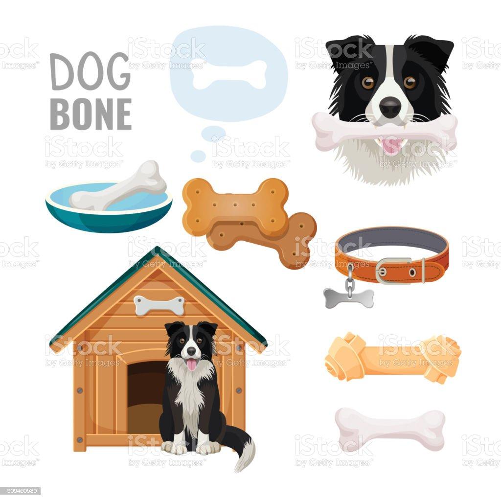 Dog bone promotional poster of zoo market goods vector art illustration