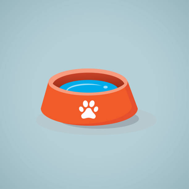 illustrations, cliparts, dessins animés et icônes de icône de vecteur de bol de chien. - animal eau