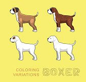 Dog Boxer Coloring Variations Vector Illustration
