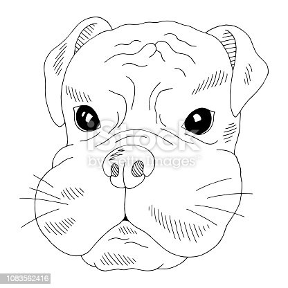 Dog Boxer Face Portrait Graphic Black White Isolated Sketch