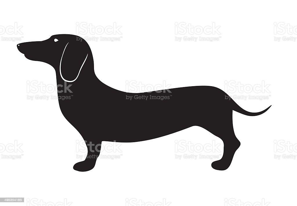 Dog breed dachshund vector art illustration