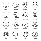 Dog breed, icon set. Heads with titles, linear icons. Labrador, Dachshund, Schnauzer, Husky, Corgi, Poodle, Pointer, etc. Line with editable stroke