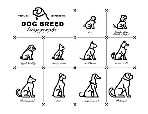 Dog Breed Iconography Vol. 2