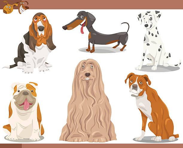 dog breeds cartoon illustration set vector art illustration