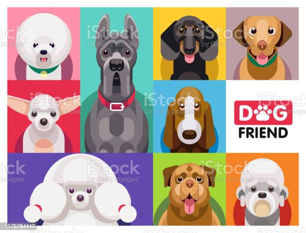 Dog breeds flat icons vector id1179784440?b=1&k=6&m=1179784440&s=612x612&h=heysliuc2m9hyszge4k ir exw1slezq97qq193oedi=