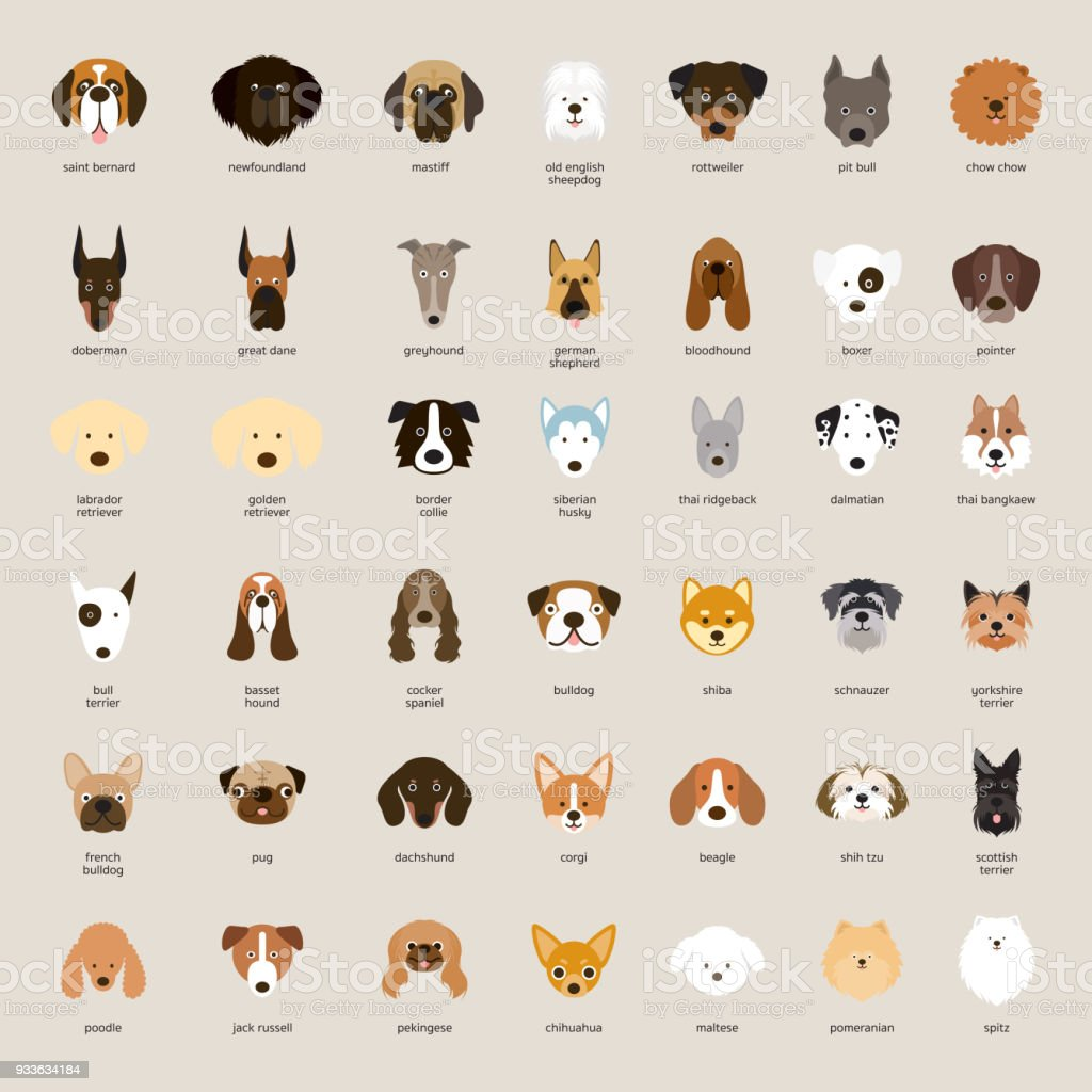 Dog Breeds, Head Set vector art illustration