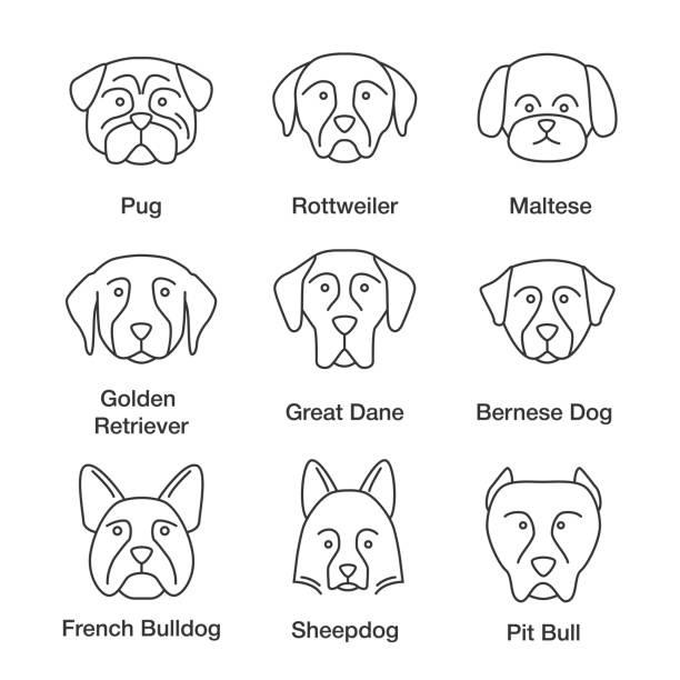 hund rassen symbole - collie stock-grafiken, -clipart, -cartoons und -symbole