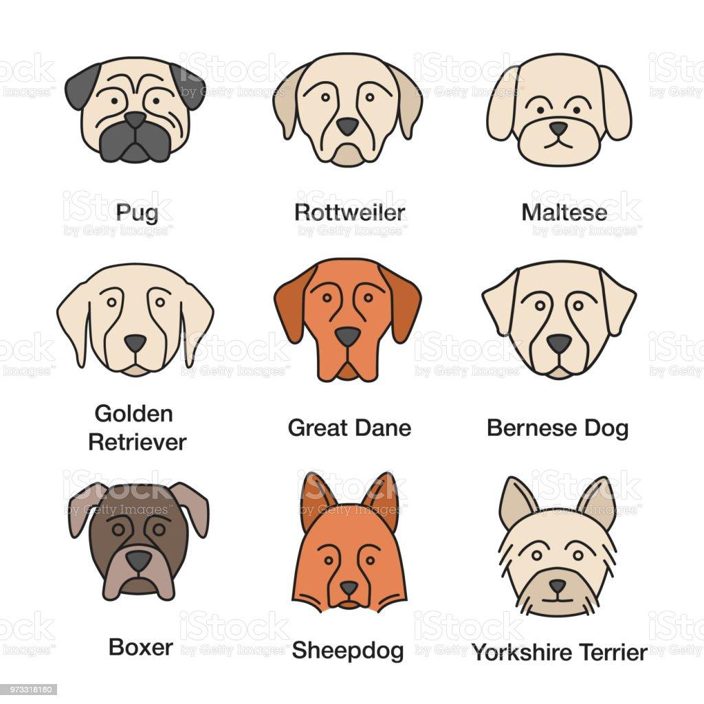 Dog breeds icons vector art illustration