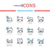 Dog breeds - modern line design style icons set