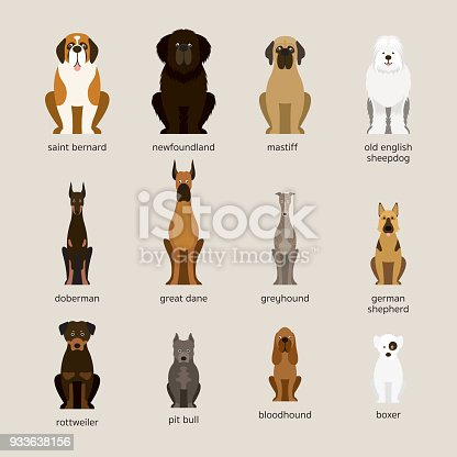 Dog Breeds Set, Giant and Large Size