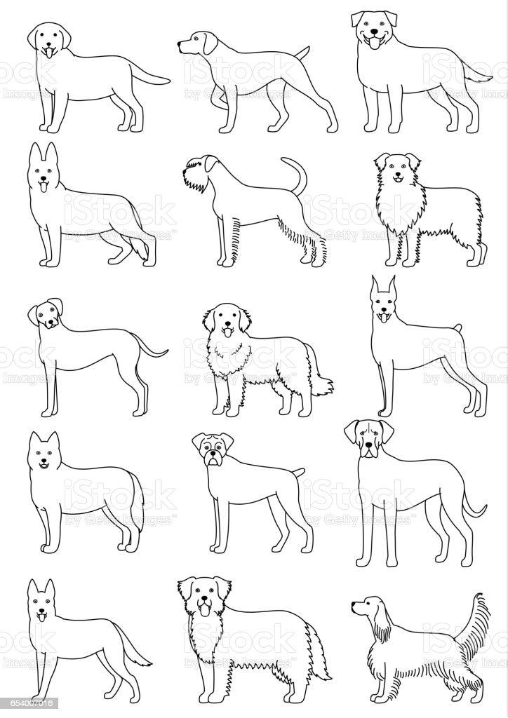 dog breeds set vector art illustration