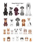dog breeds set