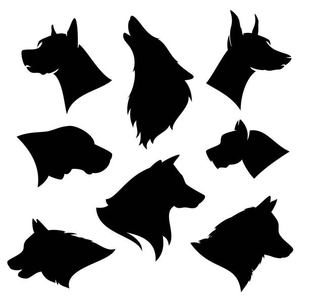 dog breeds vector silhouette set - black canine heads variety set of different dog breeds silhouettes - black and white vector outlines of profile pet heads malamute stock illustrations