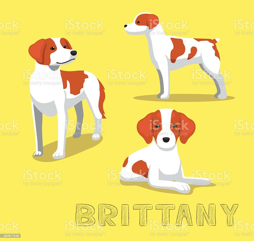 Bretagne image vectorielle d'Illustration chien - Illustration vectorielle