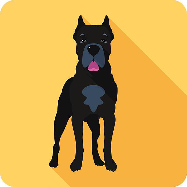 dog Cane Corso icon flat design Vector serious dog Cane Corso standing icon flat design  cane corso stock illustrations
