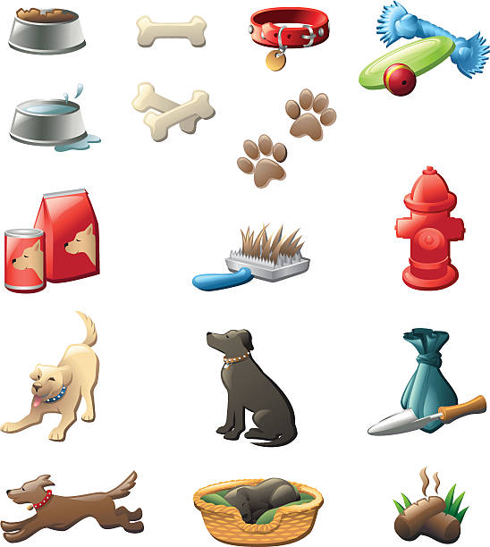 hund pflege glänzende grafiken - hundebetten stock-grafiken, -clipart, -cartoons und -symbole