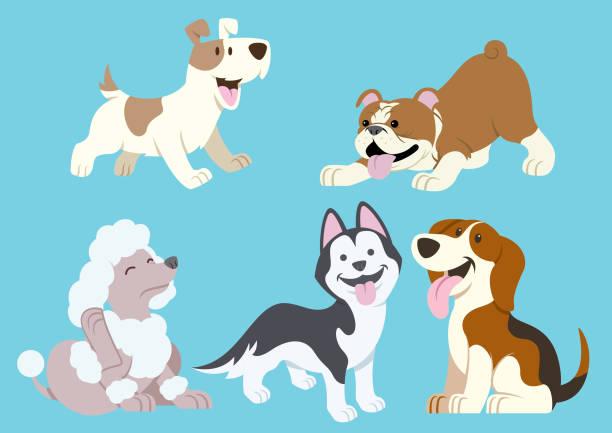 illustrazioni stock, clip art, cartoni animati e icone di tendenza di dog cartoon set - cane