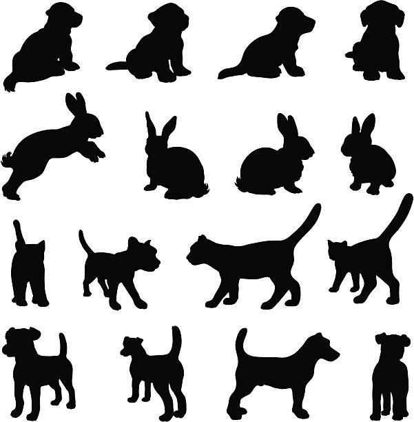 psów, kotów i królików sylwetka zestaw - jumping stock illustrations
