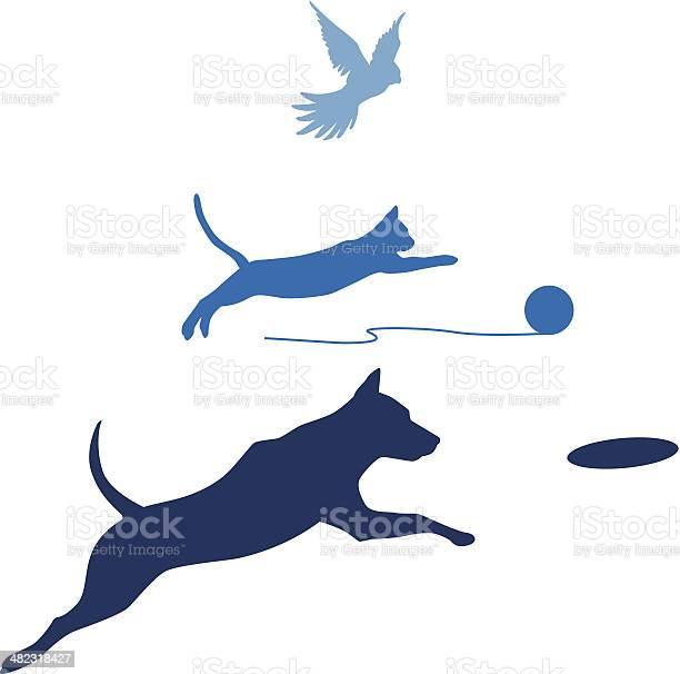 Dog cat bird jump vector id482318427?b=1&k=6&m=482318427&s=612x612&h=bua99zqlqyiu7fdtabexatxwcpvxwq003dtbs2tqk1i=