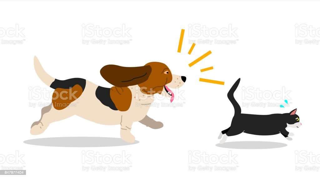 dog chases cat vector art illustration