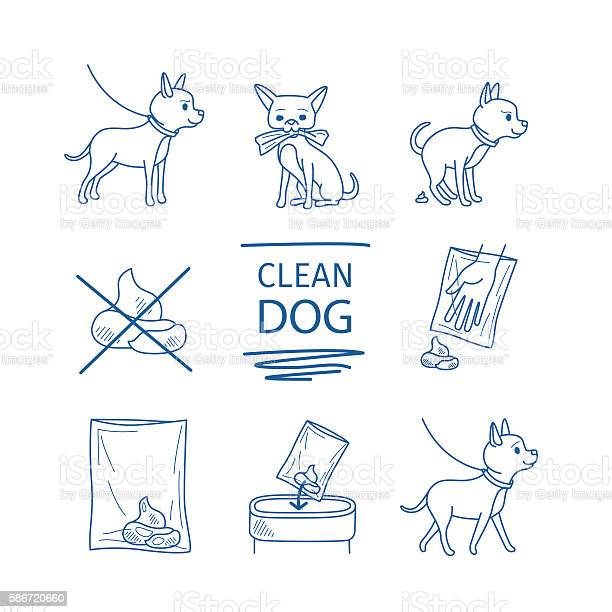 Dog clean up poop icons vector id586720660?b=1&k=6&m=586720660&s=612x612&h=nfv4erxz9pow ey7qj88wngjntxwvtcmqlzxadwmeku=
