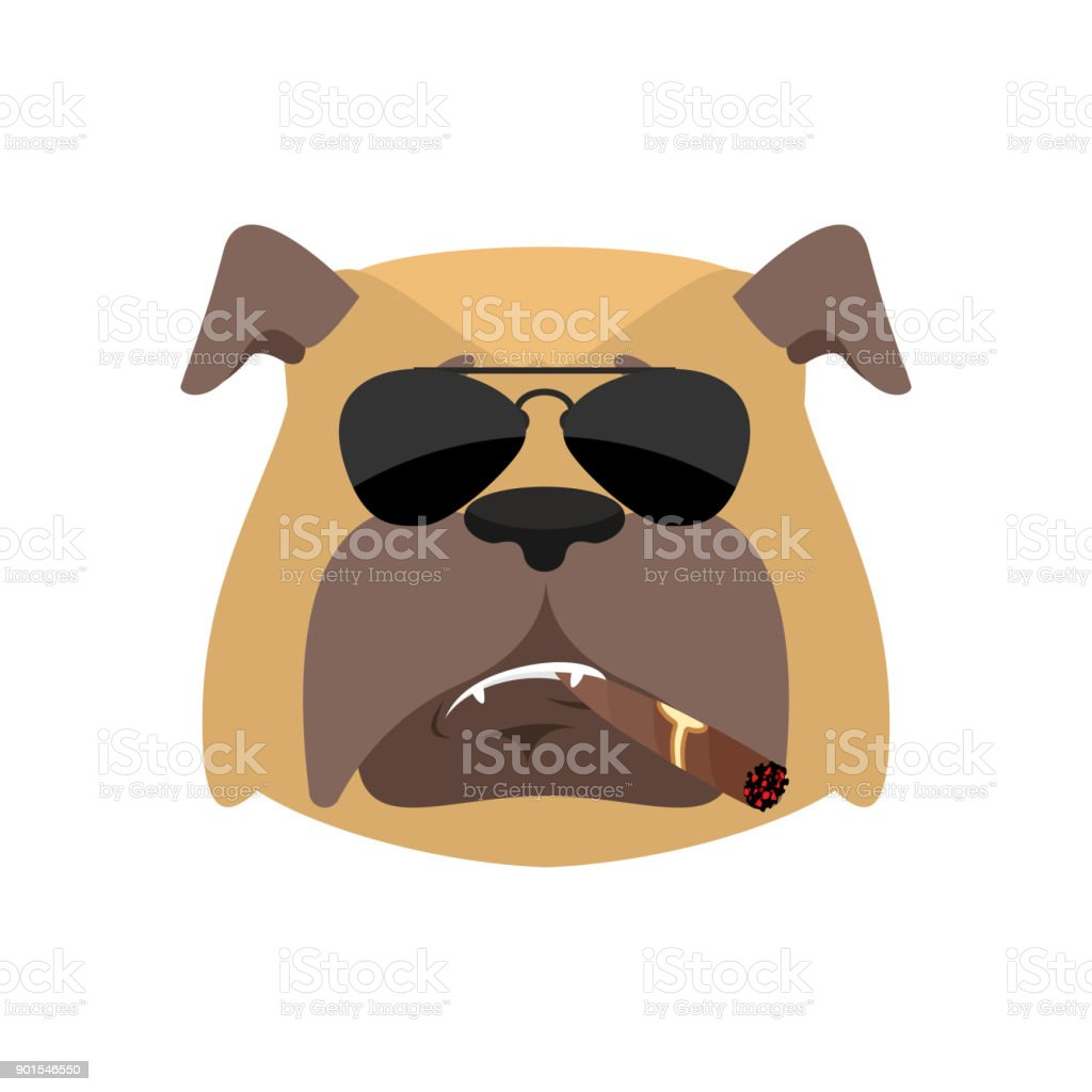 Marvelous Coole Haustiere Decoration Of Hund Cool Schweren Avatar Von Emotionen. Erlaubt