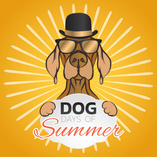 Dog days of summer symbol icon design, vector illustration vector art illustration
