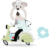 Vector illustration - Dog Doctor Riding A Motorcycle.