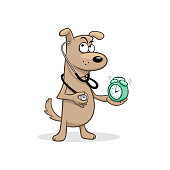 Cartoon funny beige dog doctor with stethoscope and mint alarm clock vector illustration