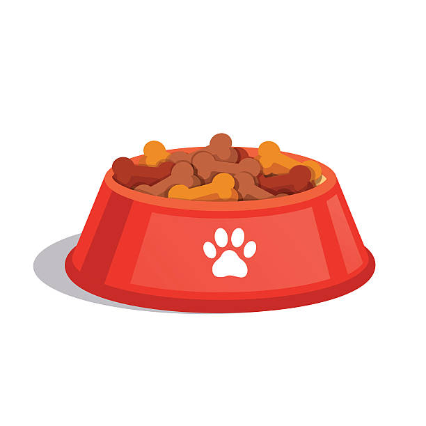 Best Quality Dog Food